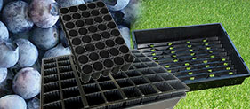 Blueberry Growing Trays Category - Blueberry Growing Supplies - For more information go to GrowingBlueberries.com.au