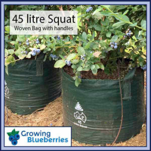 45 litre Squat Blueberry Growing Woven Bag - Blueberry Growing Supplies - For more information go to GrowingBlueberries.com.au