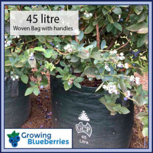 45 litre Blueberry Growing Woven Bag - Blueberry Growing Supplies - For more information go to GrowingBlueberries.com.au