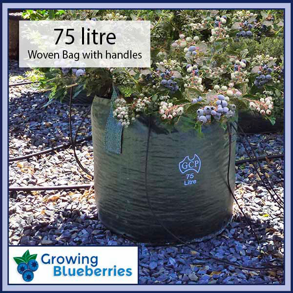 75 litre Blueberry Growing Woven Bag - Blueberry Growing Supplies - For more information go to GrowingBlueberries.com.au